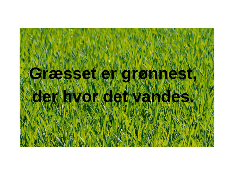 Græsset er grønnest, der hvor der vandes. (1)
